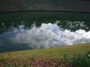 お堀に映る雲